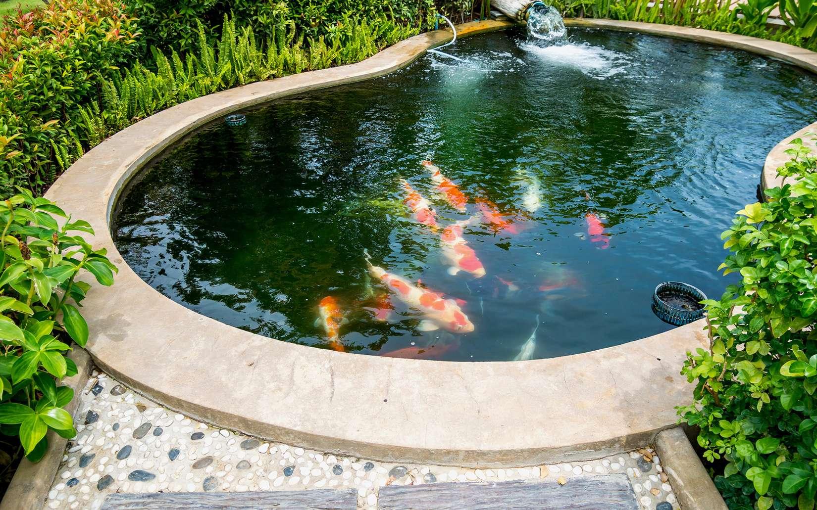 Bassin Fontaine De Jardin fontaine et bassin – garden aménagement